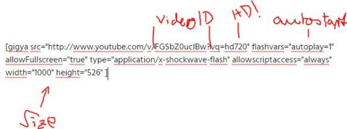 autoplay youtube wordpress gigya short code